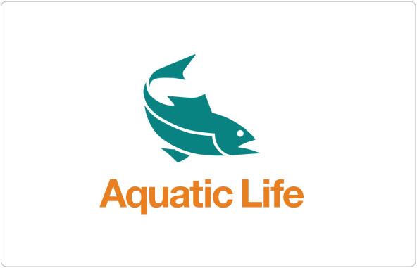 Aquatic Life Logo Design
